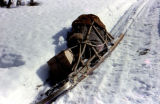 Joe Redington Sr.'s dog sled on the Iditarod Trail between Knik and Flathorn with gear.