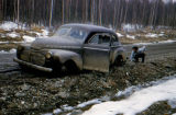 Ray Redington with car stuck in mud on Knik Road.