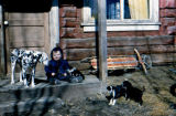 Timmy sits on porch with dalmation Duchess and puppies.