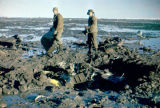 Reclamation work, two men with pieces of wreckage in mud.
