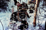 Jerry Austin and Ron Aldrich stopped on the trail, with harnessed sled dogs sleeping around the...