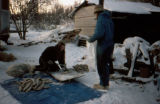 Two women chop fish outside in the winter.