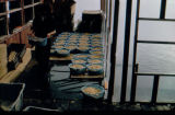 Woman carries herring roe in blue baskets, with additional baskets of roe in line on floor.