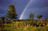 Rainbow in landscape.