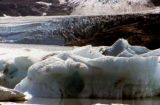 Icebergs and the face of Portage Glacier, with moraine visible.