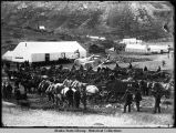 Canadian officials line up horse-drawn wagons.
