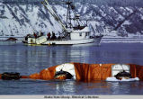 Exxon Valdez oil spill clean up.