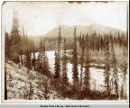 Hiking from the cabin to the gulch [mining claim], ca. 1898.