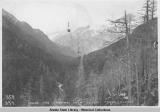 Forest and tramway from Chilkoot Trail, Alaska, 1898.