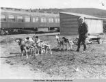 Alaskan Transportation Old and New: President Harding Inspecting a Dog Team.