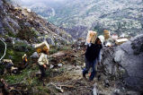 Powder crew hauls explosives for Klondike Highway construction project, August 1977.
