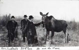 Three men and a pet moose.