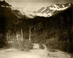 Scene on the Copper River & Northwestern Railway, Alaska.
