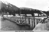 Admirality [Admiralty] -Alaska  Beach Camp showing Portion of Dock.