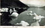 Icebergs, Gastineaux Channel, from Juneau, Alaska.