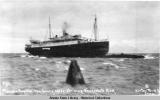 "The sinking of the Princess Sophia. (5)""Princess Sophia"" ten hours after striking..."