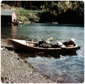 Skiff, loaded with chunks of coal, Bear Cove, Alaska.