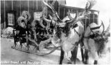 Winter travel with reindeer, Nome, 1924.