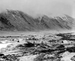 Attu Island howitzers, June 6, 1943.