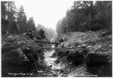 Cut for pipeline, Power Supply Division, Salmon Creek, 1912.