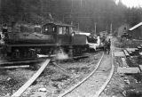 Locomotive tour of Salmon Creek Dam project, ca. 1914.