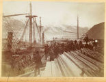 Scene on Sylvester's dock, during winter rush,  1897-98.
