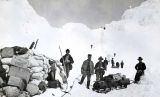 Transporting provisions over Chilkoot Pass, 1898.