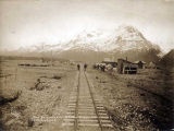 One of Alaska Road Commission's packtrains leaving Valdez.