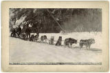 Yukon dog team freighting through canyon, Alaska, c. 1897.