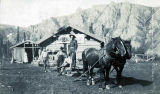 Men and horse team outside Cassiar House.