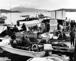 Auke Bay dock, Golden North Salmon Derby, 1968.