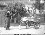 Woman at head of pony cart carrying girl.