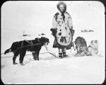 Neeta Tobey Sale with sled dogs, Nome, Alaska.