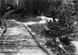A bridge and part of the road, Sumdum, 1896.