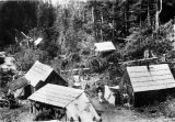 Camp in Quartz Gulch, Sumdum, 1896.