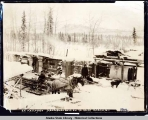 E. E. Kellogg's Headquarters on 70-Mile, Alaska, 1900.