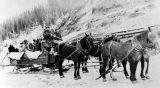 Ed S. Orr and Co.'s stage coach on the Valdez trail.