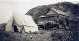 Boulder Creek camp, August 1902.