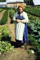 Mrs. Kulagin and her vegetable plot.