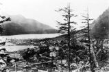 [View of Juneau, Alaska looking North from Mount Roberts toward hillside.]