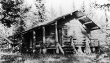 [Log Cabin (Margaret's) surrounded by trees.]