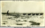 The Land  God Forgot , Tanana Flats, G.A.P., April 1912.