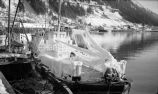 B.S.P. 3144 iced in at Juneau, 1950-51.