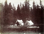 Our camp at Duncan Canal, Kupreanauf [Kupreanof] Island, Alaska, 1899.