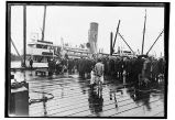 [Crowd of people meeting steamer at the wharf.]