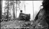 [Train engine on rails in the forest.]