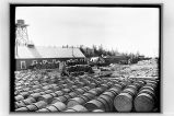 [View of cannery dock with train in, and any Libby's barrels in foreground.]