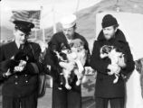 [One officer, two crew, and four puppies, U.S. Coast Guard Bering Sea Patrol boat, Hermes.]