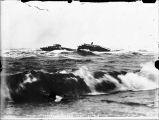 "[Catherine Sudden]; Wreck of ""Katherine Sutton"" Nome Sept 7-1900."