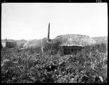 SIDE VIEW OF STEVE'S SOD HOUSE.